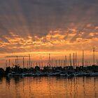 Just a Sliver of the Sun - Sunrise God Rays at the Marina by Georgia Mizuleva