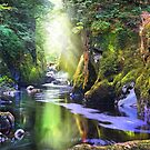 The Fairy Glen Gorge by Mal Bray