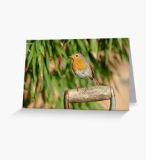 European Robin (Erithacus rubecula) on garden spade Greeting Card