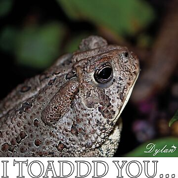 I Toad you by DylanAndDot