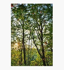 Pennsylvania Landscape #2 Photographic Print