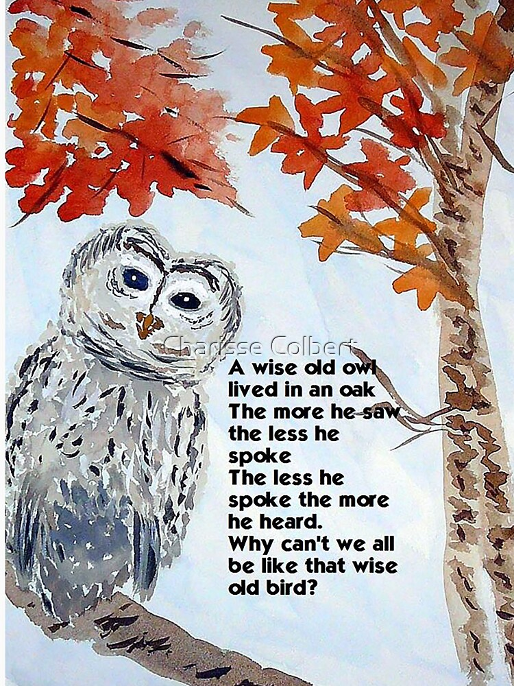 Wise Owl by charissecolbert