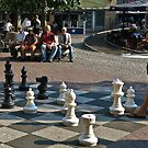 Chess in the park- Amsterdam by David Chesluk