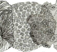 Triple Coral Sticker