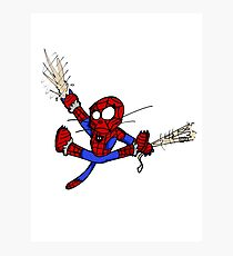 Spider-chat Photographic Print