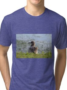 Sitting By The Water Tri-blend T-Shirt