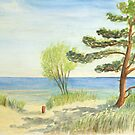 At the Baltic Sea beach on the dune by Jens-Uwe Friedrich