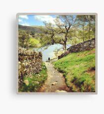 A stroll through the woods Canvas Print