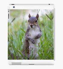 Encounter with a Squirrel iPad Case/Skin