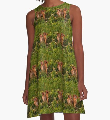 Two Baby Chipmunks A-Line Dress