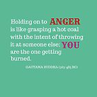 Holding on to Anger Red by Barkha Javed