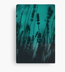 Lavender Silhouette Canvas Print