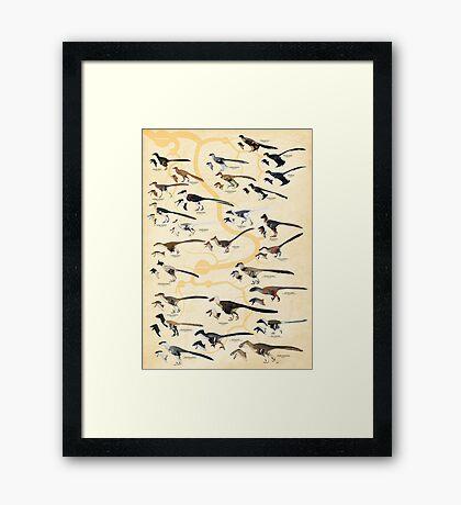 Dromaeosaurid Dinosaurs (version 2) Framed Print