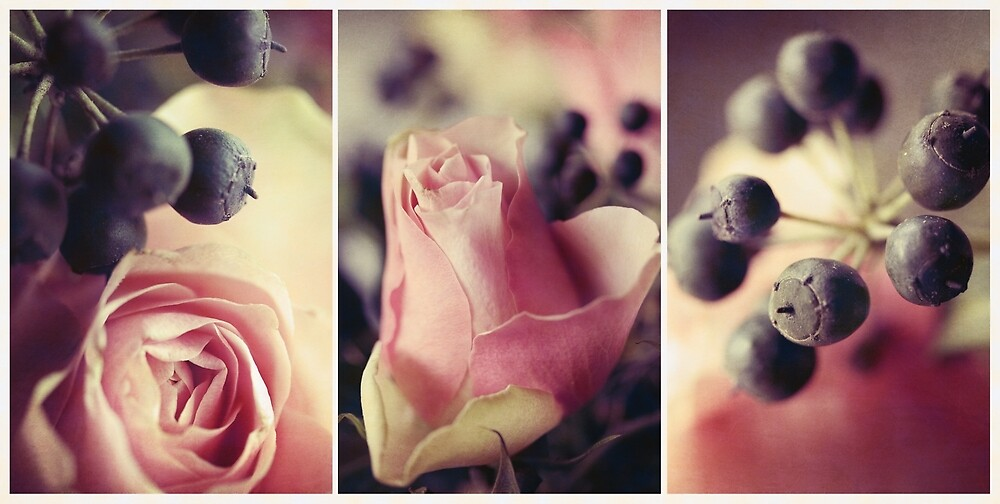 Pink and Black in Vintage Hues. by Jo Williams