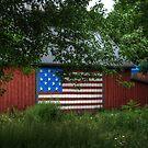 Patriotic Farm by Colleen Drew