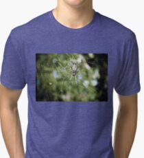 Large tropical spider in the web Tri-blend T-Shirt