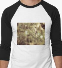 Large tropical spider in the web T-Shirt