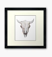 Bull skull Framed Print