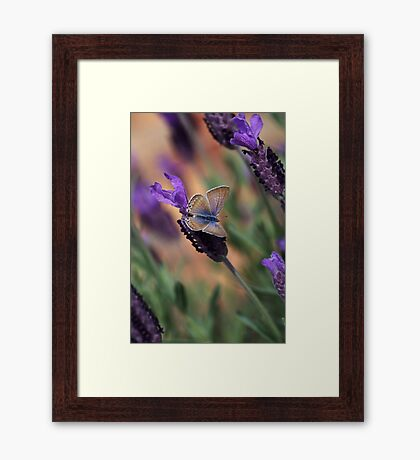 Uniting Us Together Framed Print