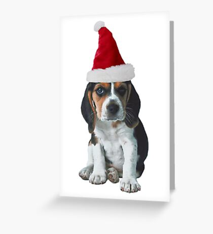 Beagle Puppy Santa Claus Merry Christmas Greeting Card
