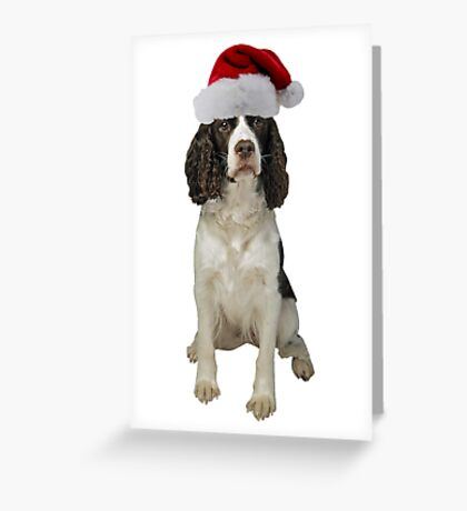 English Springer Spaniel Santa Claus Merry Christmas Greeting Card