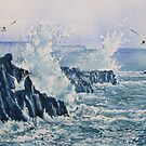 Sea, Splashes and Gulls by Glenn Marshall