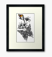 Colorful Butterfly Framed Print