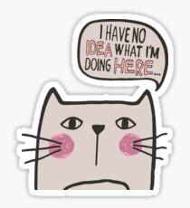 Clueless Cat Sticker
