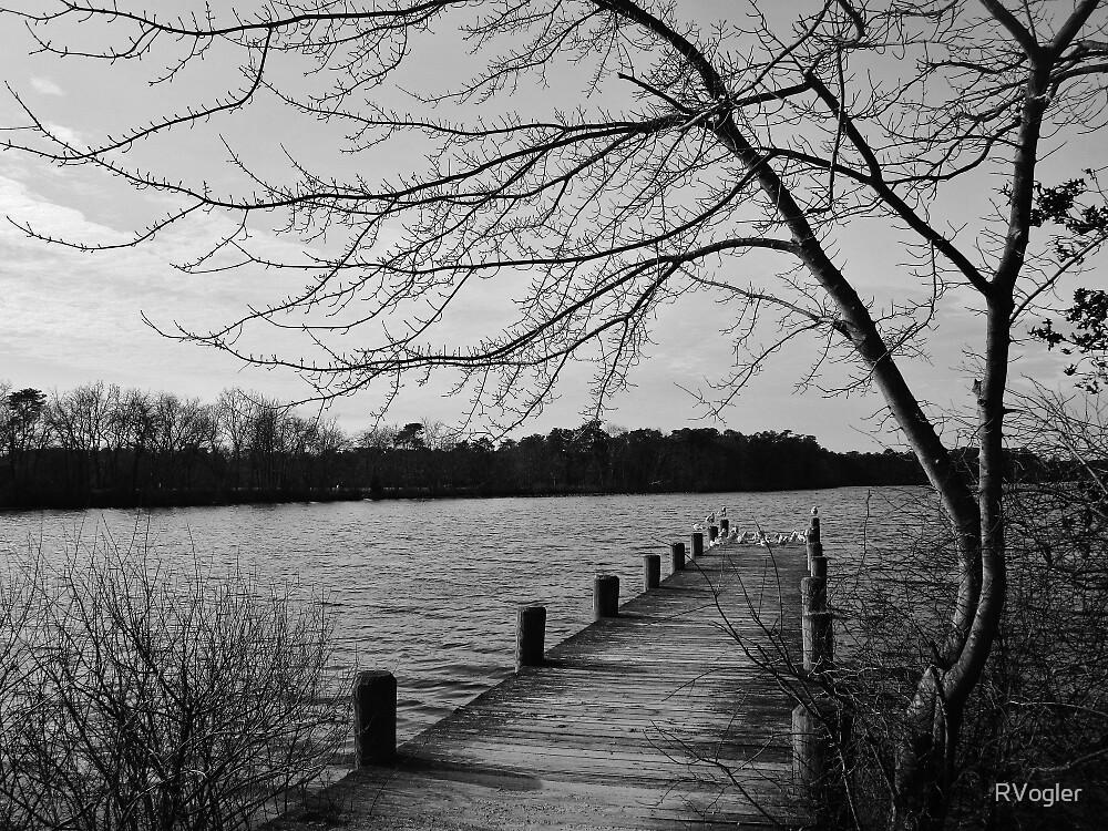Winter Lake by RVogler