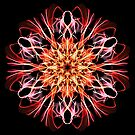 . Synchronicity Weaving & Spirit of Life Energy Mandala - Energetic Geometry Fractal  by Leah McNeir