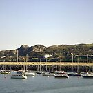 Howth Harbor by KaytLudi