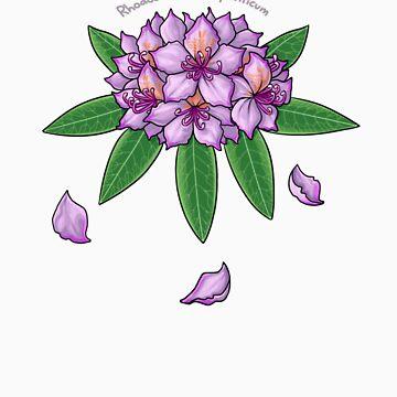 Rhododendron ponticum by Paintz
