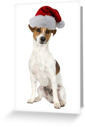 Jack Russell Terrier Santa Claus Merry Christmas by CafePretzel