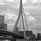 Rotterdam bridge by David Chesluk