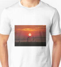 Sunrise 14-4-2016 Mornington VIC AUS  T-Shirt