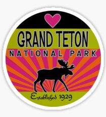 Grand Teton National Park Neon Moose Travel Decal Sticker