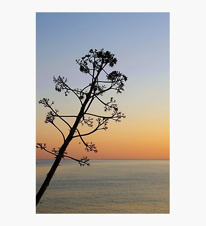 Cretan sunrise Photographic Print