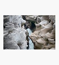 Force of nature Photographic Print