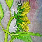 Sunflower Sunshine Side View 2012 by Anne Gitto