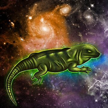 Iguana in space by insanemoe
