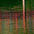 Reflections in a Japanese Garden by rrushton