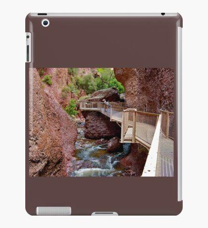 Pipeline Flume iPad Case/Skin