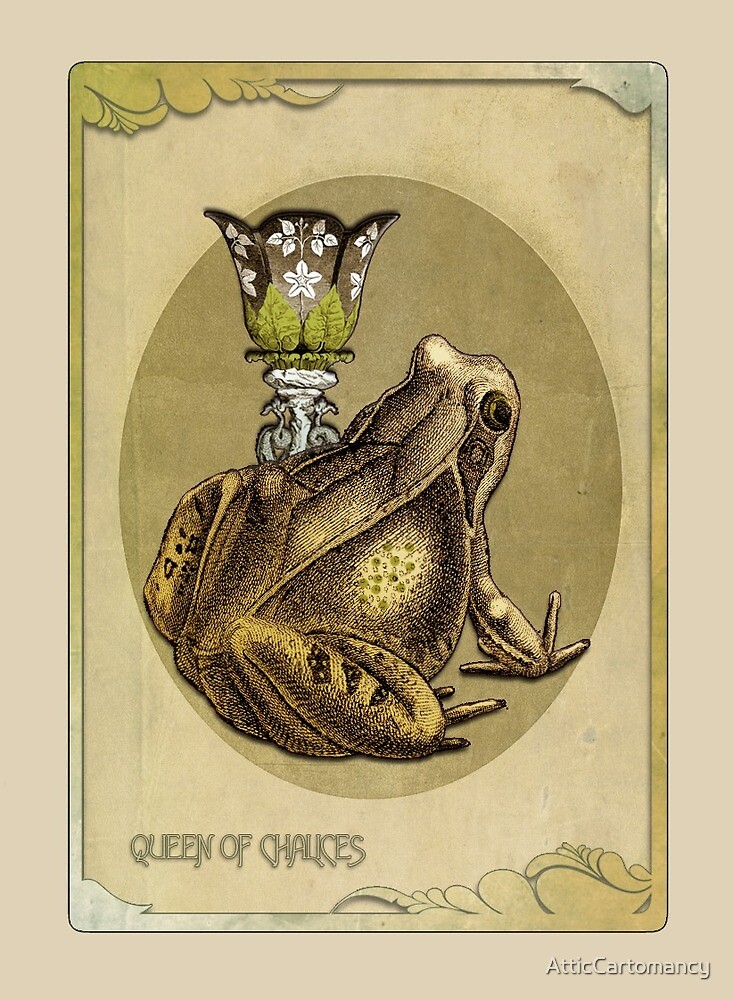 The Black Ibis Tarot - Queen of Chalices by AtticCartomancy