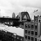 Sydney Harbour Bridge by Matthew Walters