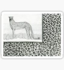 Cheetah leopard print pencil drawing Sticker