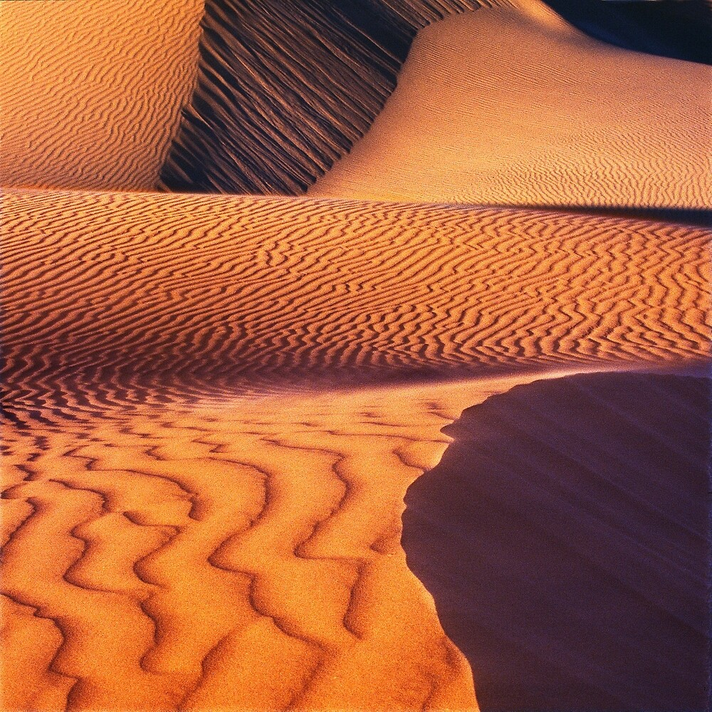 Sand dunes, Eucla National Park by Kevin McGennan