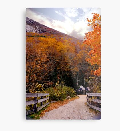 October Riot In New England Metal Print
