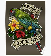 Haters Gonna Hate (military macaw) Poster