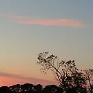 Romsey Sunrise by MIchelle Thompson