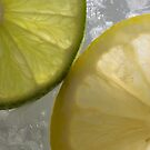 Lemon and Lime on Ice by Cory Lievers
